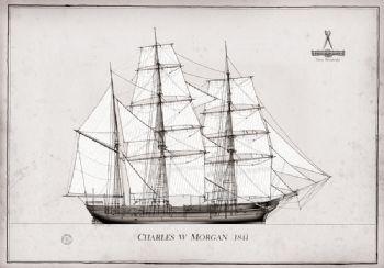 1841 Charles W Morgan pen ink study